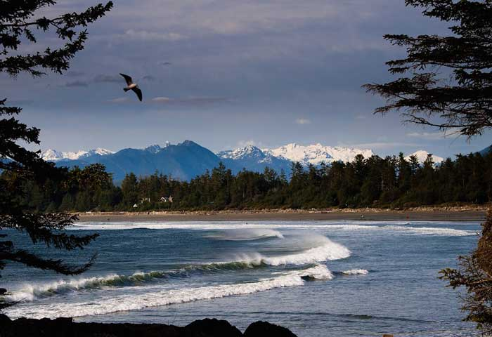 Vancouver Island beachfront homes for sale